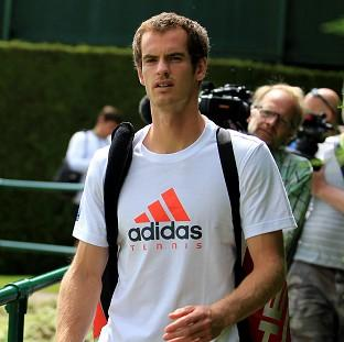 Roger Federer believes Andy Murray (pictured) will reach the Wimbledon semi-finals for the fourth successive year
